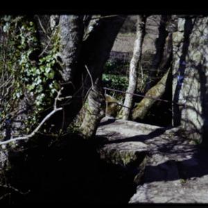 ORCH.SL.0141.tif